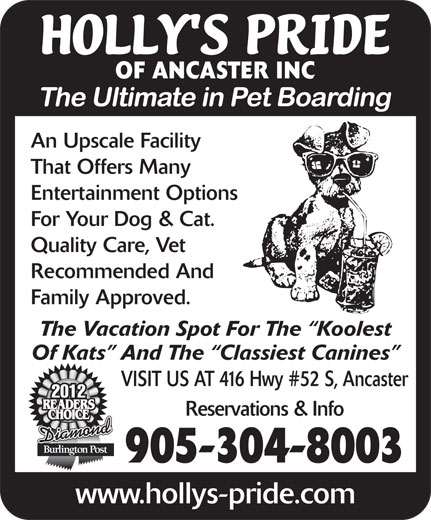 Holly's Pride-Hotel For Pets (905-336-8494) - Display Ad - Reservations & Info Diamond 905-304-8003 www.hollys-pride.com OF ANCASTER INC An Upscale Facility That Offers Many Entertainment Options For Your Dog & Cat. Quality Care, Vet Recommended And Family Approved. The Vacation Spot For The  Koolest Of Kats  And The  Classiest Canines VISIT US AT 416 Hwy #52 S, Ancaster 2012