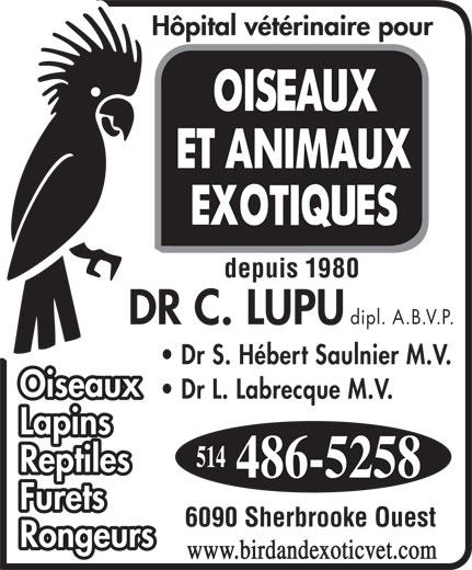 Hopital Vétérinaire pour Oiseaux et Animaux Exotiques (514-486-5258) - Annonce illustrée======= - Reptiles Furets 6090 Sherbrooke Ouest Rongeurs www.birdandexoticvet.com depuis 1980 dipl. A.B.V.P. Dr S. Hébert Saulnier M.V. Dr L. Labrecque M.V. Lapins Oiseaux