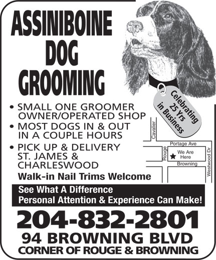 Assiniboine Dog Grooming (204-832-2801) - Display Ad - Personal Attention & Experience Can Make! 204-832-2801 94 BROWNING BLVD CORNER OF ROUGE & BROWNING ASSINIBOINE DOG Celebrating GROOMING 25 Yrsin Business SMALL ONE GROOMER OWNER/OPERATED SHOP MOST DOGS IN & OUT IN A COUPLE HOURS Cavalier Portage Ave Rouge PICK UP & DELIVERY We Are Here ST. JAMES & CHARLESWOOD Westwood Dr Browning Walk-in Nail Trims Welcome See What A Difference Personal Attention & Experience Can Make! 204-832-2801 94 BROWNING BLVD CORNER OF ROUGE & BROWNING ASSINIBOINE DOG Celebrating GROOMING 25 Yrsin Business SMALL ONE GROOMER OWNER/OPERATED SHOP MOST DOGS IN & OUT IN A COUPLE HOURS Cavalier Portage Ave Rouge PICK UP & DELIVERY We Are Here ST. JAMES & CHARLESWOOD Westwood Dr Browning Walk-in Nail Trims Welcome See What A Difference Personal Attention & Experience Can Make! 204-832-2801 94 BROWNING BLVD CORNER OF ROUGE & BROWNING ASSINIBOINE DOG Celebrating GROOMING SMALL ONE GROOMER OWNER/OPERATED SHOP MOST DOGS IN & OUT IN A COUPLE HOURS Cavalier Portage Ave Rouge PICK UP & DELIVERY We Are Here ST. JAMES & CHARLESWOOD Westwood Dr Browning Walk-in Nail Trims Welcome See What A Difference Personal Attention & Experience Can Make! 204-832-2801 94 BROWNING BLVD CORNER OF ROUGE & BROWNING ASSINIBOINE DOG Celebrating GROOMING 25 Yrsin Business SMALL ONE GROOMER OWNER/OPERATED SHOP 25 Yrsin Business MOST DOGS IN & OUT IN A COUPLE HOURS Cavalier Portage Ave Rouge PICK UP & DELIVERY We Are Here ST. JAMES & CHARLESWOOD Westwood Dr Browning Walk-in Nail Trims Welcome See What A Difference