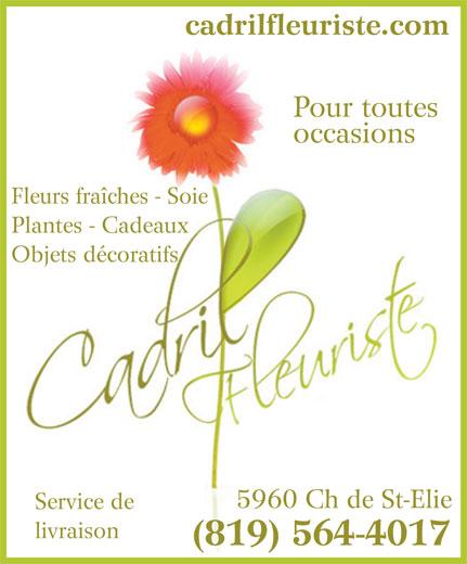 Cadril Fleuriste Enr (819-564-4017) - Display Ad - cadrilfleuriste.com Pour toutes occasions Fleurs fraîches - Soie Plantes - Cadeaux Objets décoratifs 5960 Ch de St-Elie Service de livraison (819) 564-4017