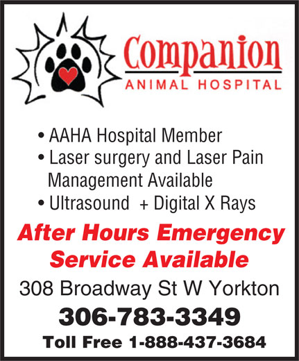 Companion Animal Hospital (306-783-3349) - Annonce illustrée======= - AAHA Hospital Member Laser surgery and Laser Pain Management Available Ultrasound  + Digital X Rays After Hours Emergency Service Available 308 Broadway St W Yorkton 306-783-3349 Toll Free 1-888-437-3684
