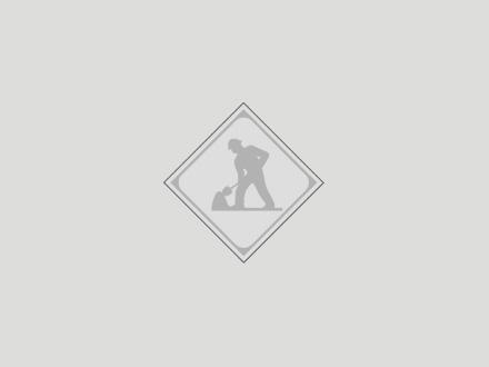 Dynamex Canada (250-382-9110) - Display Ad -
