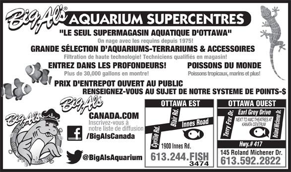 """Aquarium Services Warehouse Outlets (613-244-3474) - Annonce illustrée======= - """"LE SEUL SUPERMAGASIN AQUATIQUE D'OTTAWA"""" On nage avec les requins depuis 1975! GRANDE SÉLECTION D AQUARIUMS-TERRARIUMS & ACCESSOIRES Filtration de haute technologie! Techniciens qualifiés en magasin! ENTREZ DANS LES PROFONDEURS! POISSONS DU MONDE Plus de 30,000 gallons en montre! Poissons tropicaux, marins et plus! PRIX D'ENTREPOT OUVERT AU PUBLIC RENSEIGNEZ-VOUS AU SUJET DE NOTRE SYSTEME DE POINTS-$ OTTAWA EST OTTAWA OUEST .Earl Grey Drive CANADA.COM Roland Michener Dr NEXT TO AMC THEATRES AT Inscrivez-vous à KANATA CENTRUM Innes Road Blair Rd.Cyrille Rd. y Fox Dr notre liste de diffusion /BigAlsCanada Hwy.# 417 1900 Innes Rd. 145 Roland Michener Dr. 613.244.FISH 613.592.2822 3474 rr Te"""