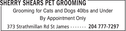 Sherry Shears Pet Grooming (204-777-7297) - Display Ad - Grooming for Cats and Dogs 40lbs and Under By Appointment Only Grooming for Cats and Dogs 40lbs and Under By Appointment Only Grooming for Cats and Dogs 40lbs and Under By Appointment Only Grooming for Cats and Dogs 40lbs and Under By Appointment Only