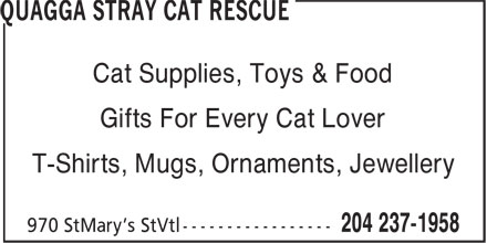 Ads Quagga Stray Cat Rescue