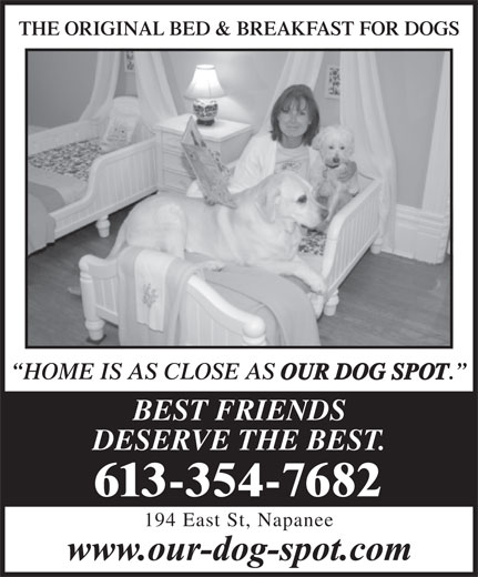 Our Dog Spot (613-354-7682) - Display Ad - HOME IS AS CLOSE AS OUR DOG SPOT BEST FRIENDS DESERVE THE BEST. 613-354-7682 194 East St, Napanee THE ORIGINAL BED & BREAKFAST FOR DOGSORIGINAL BED & BREAKFAST FOR DOGS