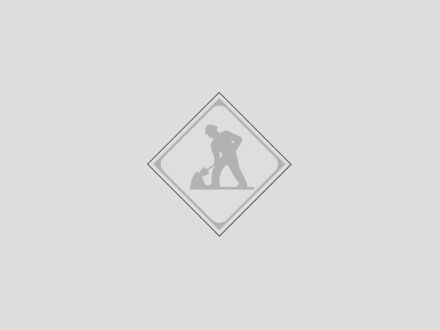 Apache Seeds Ltd (780-489-4245) - Display Ad -
