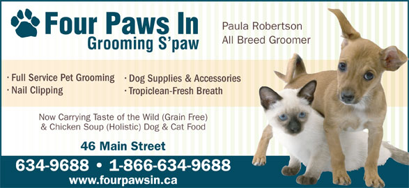 Four Paws In (709-634-9688) - Annonce illustrée======= - All Breed Groomer Grooming S paw Full Service Pet Grooming Dog Supplies & Accessories Nail Clipping Tropiclean-Fresh Breath Now Carrying Taste of the Wild (Grain Free) & Chicken Soup (Holistic) Dog & Cat Food 46 Main Street 634-9688   1-866-634-9688 www.fourpawsin.ca Paula Robertson Four Paws In All Breed Groomer Grooming S paw Full Service Pet Grooming Dog Supplies & Accessories Nail Clipping Tropiclean-Fresh Breath Now Carrying Taste of the Wild (Grain Free) & Chicken Soup (Holistic) Dog & Cat Food 46 Main Street 634-9688   1-866-634-9688 www.fourpawsin.ca Paula Robertson Four Paws In