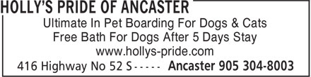 Holly's Pride Of Ancaster (905-304-8003) - Display Ad - Ultimate In Pet Boarding For Dogs & Cats Free Bath For Dogs After 5 Days Stay www.hollys-pride.com