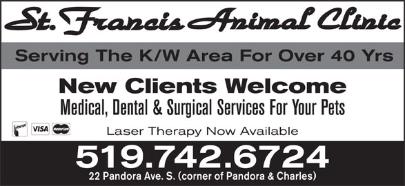 St Francis Animal Clinic (519-742-6724) - Display Ad - Serving The K/W Area For Over 40 Yrs New Clients Welcome Medical, Dental & Surgical Services For Your Pets Laser Therapy Now Available 519.742.6724 22 Pandora Ave. S. (corner of Pandora & Charles)