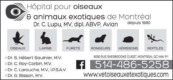 Hopital Vétérinaire pour Oiseaux et Animaux Exotiques (514-486-5258) - Annonce illustrée======= -