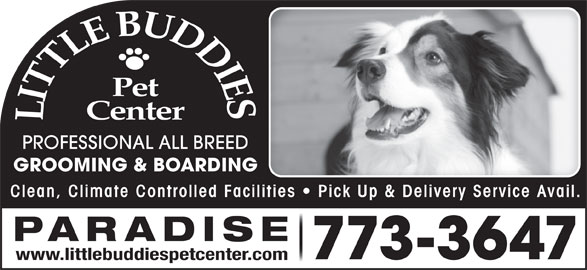 Little Buddies Dog & Cat Boarding & Grooming (709-773-3647) - Display Ad - PROFESSIONAL ALL BREED GROOMING & BOARDINGG Clean, Climate Controlled Facilities   Pick Up & Delivery Service Avail.lities  Pick Up & Delivery Service Avail PARADISE 773-3647 www.littlebuddiespetcenter.com