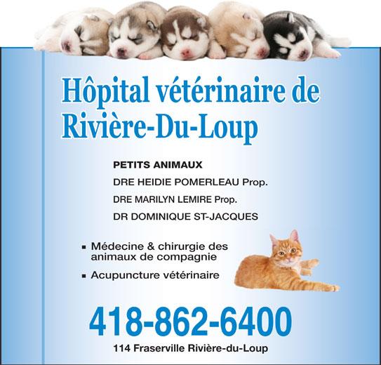 Hôpital Vétérinaire de Rivière-du-Loup (418-862-6400) - Annonce illustrée======= - PETITS ANIMAUX DRE HEIDIE POMERLEAU Prop. DRE MARILYN LEMIRE Prop. DR DOMINIQUE ST-JACQUES Médecine & chirurgie des animaux de compagnie Acupuncture vétérinaire 418-862-6400 114 Fraserville Rivière-du-Loup