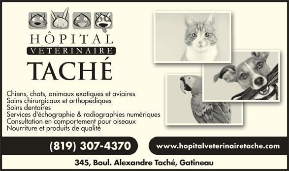 Hôpital Vétérinaire Taché (819-777-5583) - Annonce illustrée======= - Chiens, chats, animaux exotiques et aviairesaviaires Soins chirurgicaux et orthopédiques Soins dentaires Services d'échographie & radiographies numériquesnumériques Consultation en comportement pour oiseauxseaux Nourriture et produits de qualité www.hopitalveterinairetache.comwww.hopitalveterinairetache.com (819) 307-437070 345, Boul. Alexandre Taché, Gatineaulexandre Taché, Gatineau