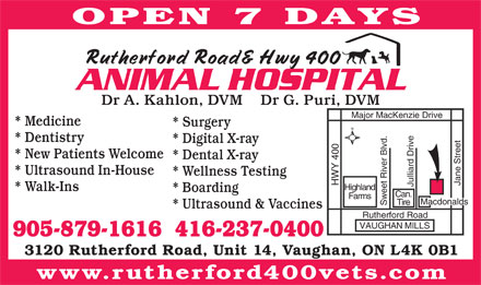 Rutherford Rd & Hwy 400 Animal Hospital (905-879-1616) - Annonce illustrée