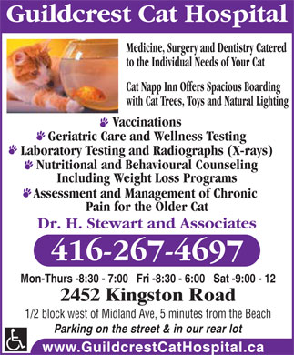 Guildcrest Cat Hospital (416-267-4697) - Display Ad - Guildcrest Cat Hospital Medicine, Surgery and Dentistry Catered to the Individual Needs of Your Cat Cat Napp Inn Offers Spacious Boarding with Cat Trees, Toys and Natural Lighting Vaccinations Geriatric Care and Wellness Testing Laboratory Testing and Radiographs (X-rays) Nutritional and Behavioural Counseling Including Weight Loss Programs Assessment and Management of Chronic Pain for the Older Cat Dr. H. Stewart and Associates 416-267-4697 Mon-Thurs -8:30 - 7:00   Fri -8:30 - 6:00   Sat -9:00 - 12 2452 Kingston Road 1/2 block west of Midland Ave, 5 minutes from the Beach Parking on the street & in our rear lot  Guildcrest Cat Hospital Medicine, Surgery and Dentistry Catered to the Individual Needs of Your Cat Cat Napp Inn Offers Spacious Boarding with Cat Trees, Toys and Natural Lighting Vaccinations Geriatric Care and Wellness Testing Laboratory Testing and Radiographs (X-rays) Nutritional and Behavioural Counseling Including Weight Loss Programs Assessment and Management of Chronic Pain for the Older Cat Dr. H. Stewart and Associates 416-267-4697 Mon-Thurs -8:30 - 7:00   Fri -8:30 - 6:00   Sat -9:00 - 12 2452 Kingston Road 1/2 block west of Midland Ave, 5 minutes from the Beach Parking on the street & in our rear lot