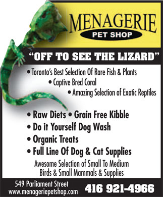Menagerie Pet Shop (416-921-4966) - Display Ad - OFF TO SEE THE LIZARD Awesome Selection of Small To Medium Birds & Small Mammals & Supplies 549 Parliament Street 416 921-4966 www.menageriepetshop.com