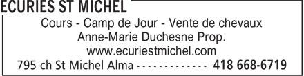 Ecuries St Michel (418-668-6719) - Annonce illustrée======= - Cours - Camp de Jour - Vente de chevaux - Anne-Marie Duchesne Prop. - www.ecuriestmichel.com