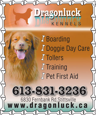 Dragonluck Kennels (613-831-3236) - Display Ad - Doggie Day Care Boarding Tollers Training Pet First Aid 613-831-3236 6830 Fernbank Rd,Stittsville6830 Fnbk Rd,Stittille www.dragonluck.ca