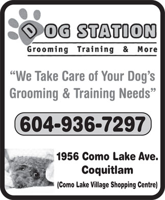 Dog Station Grooming Training & More (604-936-7297) - Display Ad - We Take Care of Your Dog s Grooming & Training Needs 604-936-7297 1956 Como Lake Ave. Coquitlam (Como Lake Village Shopping Centre)