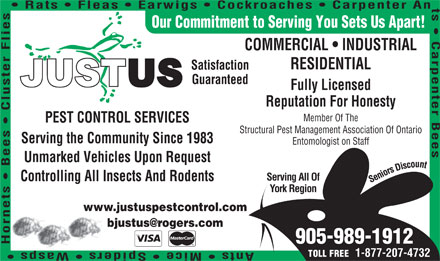 Justus Services (905-989-1912) - Display Ad - 1-877-207-4732 TOLL FREE Rats   Fleas   Earwigs   Cockroaches   Carpenter An Our Commitment to Serving You Sets Us Apart! COMMERCIAL   INDUSTRIAL RESIDENTIAL Satisfaction Guaranteed Fully Licensed Reputation For Honesty Member Of The PEST CONTROL SERVICES Structural Pest Management Association Of Ontario Serving the Community Since 1983 Entomologist on Staff s Serving All Of Unmarked Vehicles Upon Request Controlling All Insects And Rodents York Region www.justuspestcontrol.com 905-989-1912 Member Of The PEST CONTROL SERVICES Structural Pest Management Association Of Ontario Serving the Community Since 1983 Entomologist on Staff s Serving All Of Unmarked Vehicles Upon Request Controlling All Insects And Rodents York Region www.justuspestcontrol.com 905-989-1912 Reputation For Honesty Rats   Fleas   Earwigs   Cockroaches   Carpenter An Our Commitment to Serving You Sets Us Apart! COMMERCIAL   INDUSTRIAL RESIDENTIAL Satisfaction Guaranteed Fully Licensed 1-877-207-4732 TOLL FREE