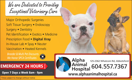Alpha Animal Hospital (604-859-6322) - Display Ad - We are Dedicated to Providing Exceptional Veterinary Care Major Orthopedic Surgeries Soft Tissue Surgery   Endoscopy Surgery   Dentistry Pet Identification   Exotics   Medicine Prescription Food Digital Xray In-House Lab   Spay   Neuter Vaccination   Heated Kennels Breeder & Multi Pet Discounts We Honor SPCA Certificates 125-2362 Whatcom Rd, Abbotsford EMERGENCY 24 HOURS 604.557.7367 ON CALL Open 7 Days a Week 8am - 9pm www.alphaanimalhospital.ca Times subject to change without notice